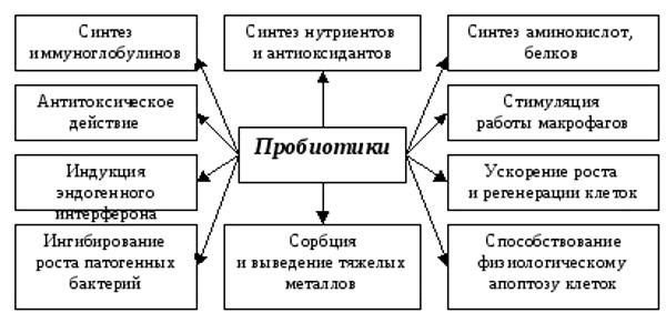Эуфлорин описание препарата: инструкция по применению, способ.