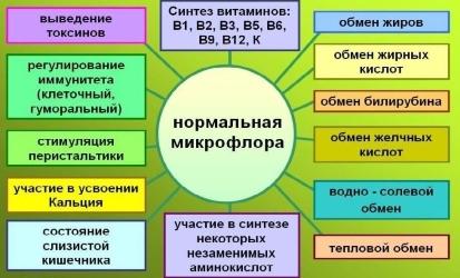 Функции нормальной микрофлоры.