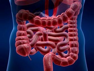 Дисбактериоз не развивается у здоровых людей, это своеобразный сигнал о неблагополучии в организме.