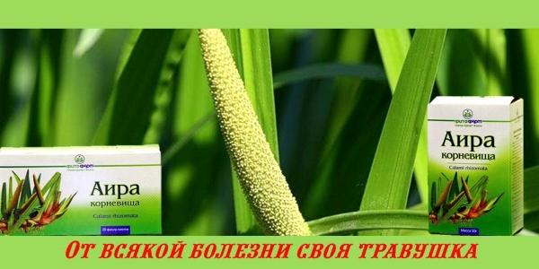 Средство растительного происхождения для нормализации пищеварения и уменьшения газообразования в кишечнике
