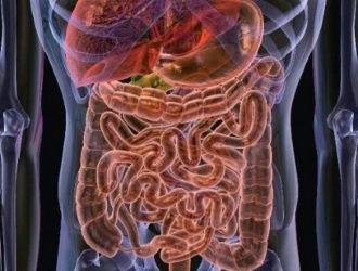 Дисбактериоз кишечника: симптомы, лечение, диагностика, причины