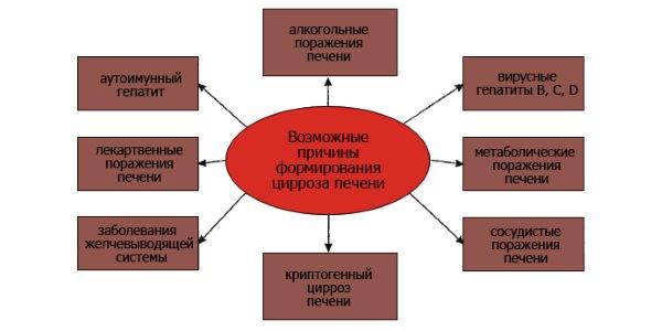 Лечение цирроза печении, народными средствами