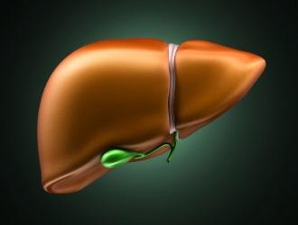 Сирепар активно работает против болезнетворных микроорганизмов, улучшает работу печени.