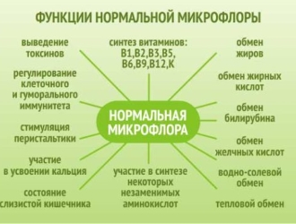 Основные функции нормальной микрофлоры кишечного тракта.