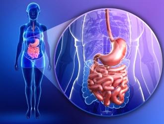 Заболевание может поражать как отдельные участки, так и всю слизистую оболочку кишечника.